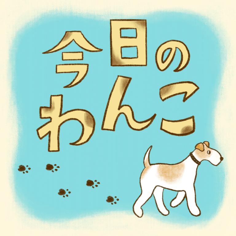 今日のわんこ  Daily MOREサムネイル用イラスト